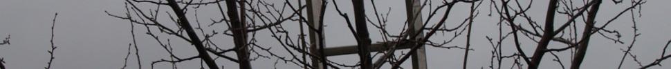 bildleiste-obstbaumschnitt.jpg